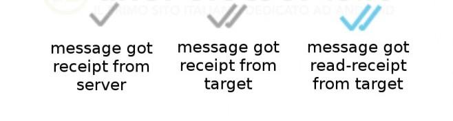 La conferma di lettura di WhastApp avrà la doppia spunta azzurra