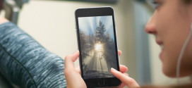 Sfondi della Settimana: la foresta per iPhone