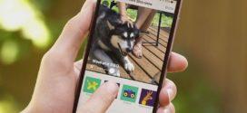 Novità per le foto di Facebook, arriva Slideshow
